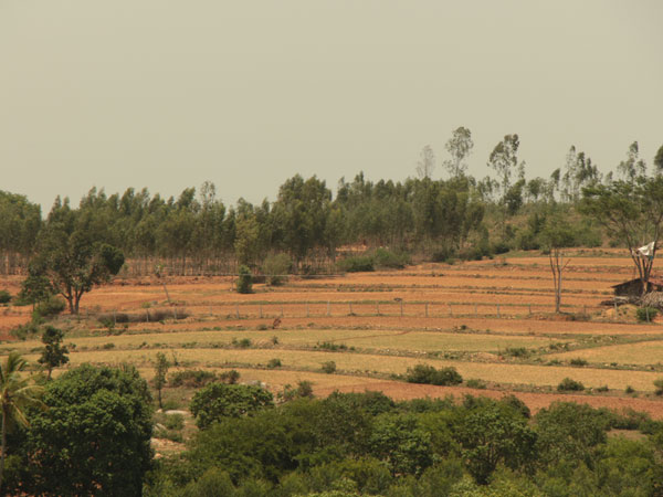 Agriculture land for sale in Bangalore-heavenly woods-real estate Bangalore